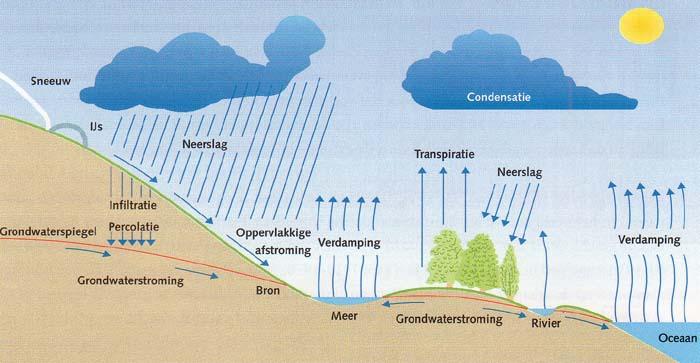 Afbeeldingsresultaat voor NW-nl  Stomme vragen bestaan niet! waarom is zeewater zout